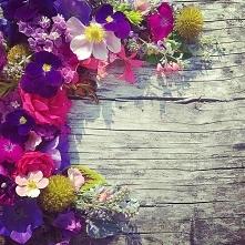 #flowersinfluencer #flower #flowerdesign #summersflowersingreen #mygarden #florists #hortiadvisor #horticulture #plantslovers #plantdesign #plantslovers #pinkflowers #natureboqu...