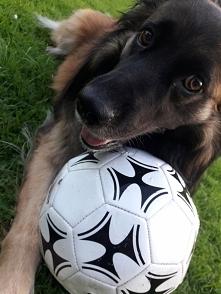 Zabawa z piłką