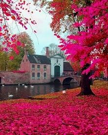 Dzwonnica w Brugii to obiekt historyczny w Belgii <3 Darmowe puzzle online :)