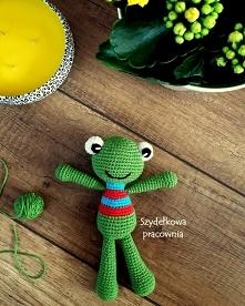 Zielona żabka Franio