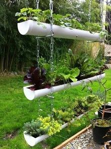 wykorzystanie rynny w ogrodzie
