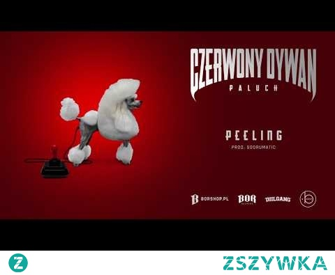 """Paluch - """"Peeling"""" prod. SoDrumatic (OFFICIAL AUDIO)"""
