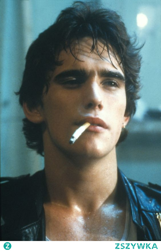 matt dillon the outsiders movie