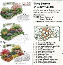 Pory roku w ogrodzie