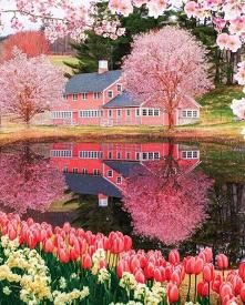 Uroki wiosny w Rhode Island...
