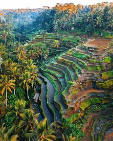 Bali-Indonezjia