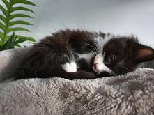 Hug me ...