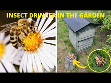 INSECT DRINKER IN THE GARDEN! HOW TO MAKE A INSECT WATER FEEDER? / DIY