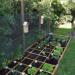Organizacja ogrodu