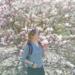 Powsin, wszystko o magnoliach