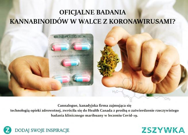 Czy będzie nowy lek na COVID19?