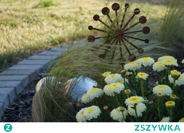 Dmuchawiec - Rdzawe wtyczki ogrodowe.