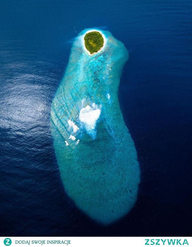 Jedna z 1200 wysp na Malediwach