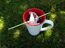 Jak zaparzyć herbatę podcza...