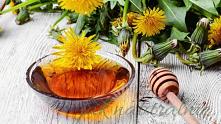 Syrop z kwiatów mniszka lek...