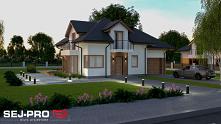 Reprezentacyjny projekt dom...