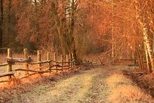 polska wiosna na Podlasiu