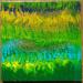 Obraz akrylem, 40 x 40 cm, kolorystyka łąki, ciepłe kolory. Na sprzedaż