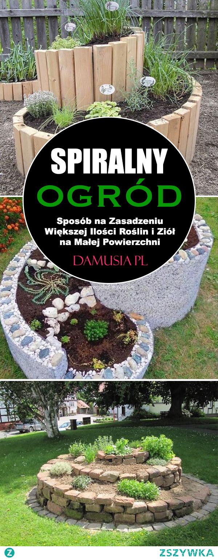 Spiralny Ogród – Sposób na Zasadzeniu Większej Ilości Roślin i Ziół na Małej Powierzchni