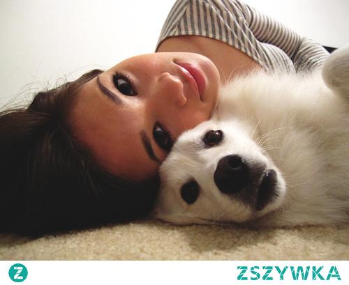 3 ćwiczenia, które można wykonywać z psem
