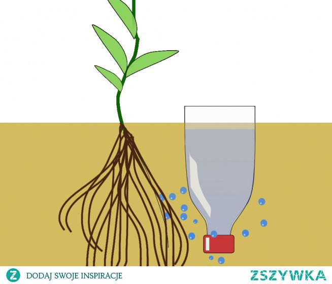"""Jak z Plastikowej Butelki Zrobić """"Urządzenie"""" Do Podlewania Roślin"""