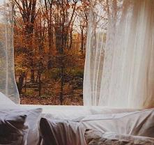 #cold #autumn