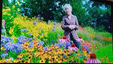 Kwiaty, kolory