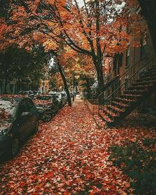 #piękna #jesień