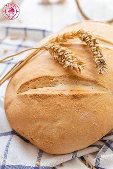 Chleb pszenny w godzinę - N...
