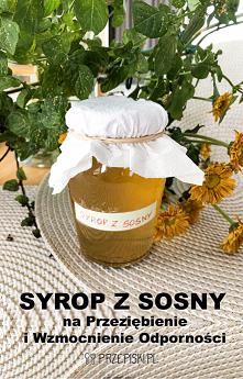 Domowy Syrop z Sosny na Prz...