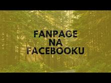 Marketing Internetowy! Fanpage Na Facebooku...