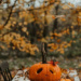 #dynia #jesiennie