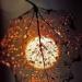 #jesień#słońce