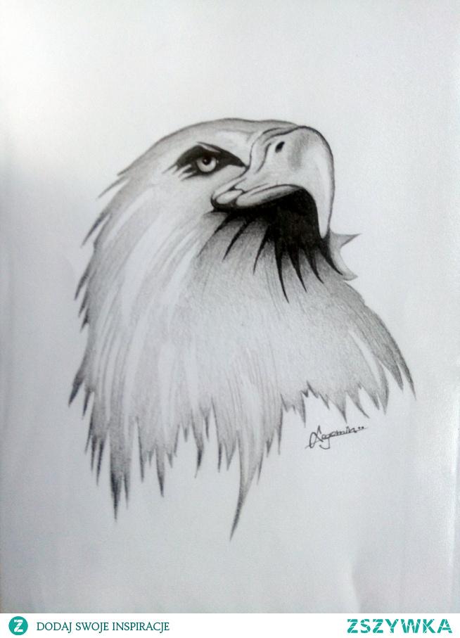 Orzeł król ptaków, tatuaże