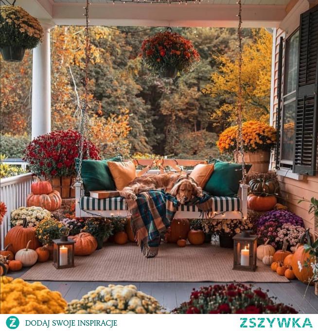 #jesień #ogrod