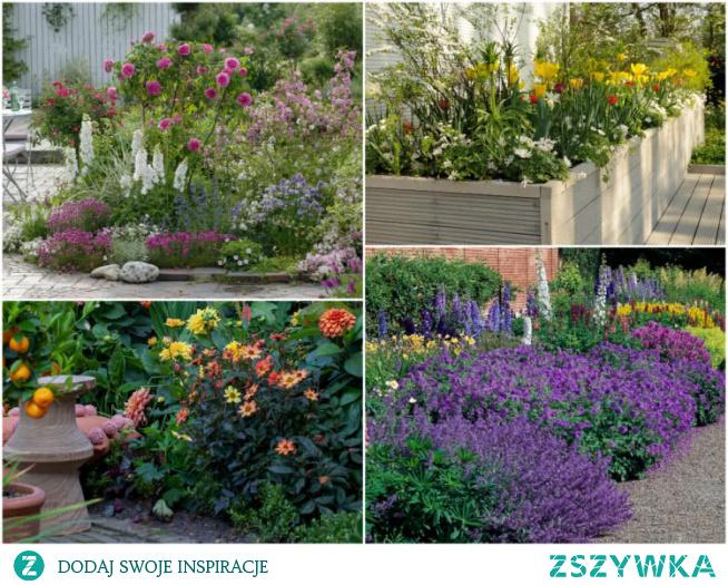 12-inspirujacych-pomyslow-na-kolorowe-rabaty-ogrodowe
