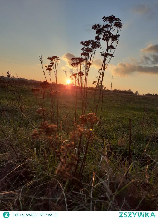 #zachód#słońca#jesien#