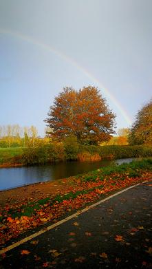 #złota#jesień