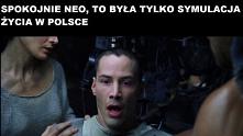 Tylko spokojnie Neo...  Zob...