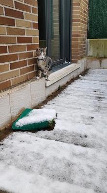 Pierwszy śnieg Nali