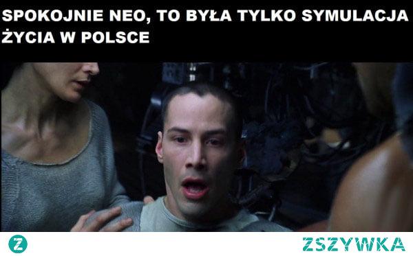 Tylko spokojnie Neo...  Zobacz więcej na pocisk.org