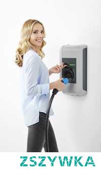 Polecane domowe stacje ładowania samochodów elektrycznych