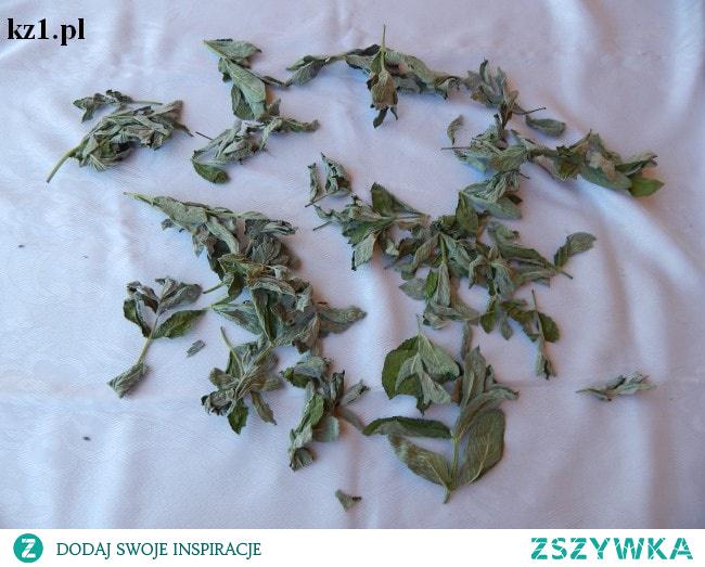 Jak suszy się zioła?