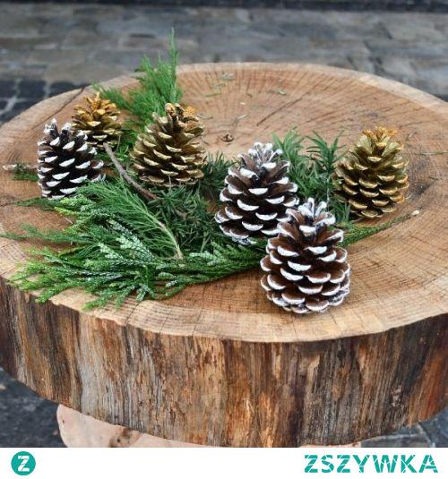 Szyszki są takim elementem dekoracji, że nawet jak położymy je w ozdobnym koszyku, będą tworzyć klimat. To bardzo wdzięczny materiał do przygotowywania ozdób. Doskonale wpisują się w trend bliskości z naturą.   #meblewoskowane #drewno #mebledrewniane #natura #salon #szyszki #meblezdrewna #wnętrza #aranażacje #dekoracje #ozdoby