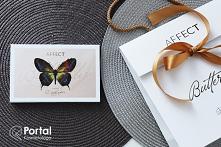 Paleta cieni butterfly AFFECT