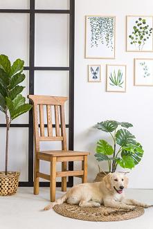 Drewniane krzesło sosnowe, stolik. #Dodatki #Meble #Stylizacja #stolik #glamour #Salon #Wystrójwnętrz #Wnętrze #wiosna #kwiaty #konsola