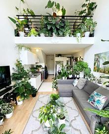 Zielono mi #salon #zieleń #...