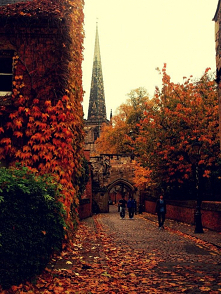 Love Autumn ♡