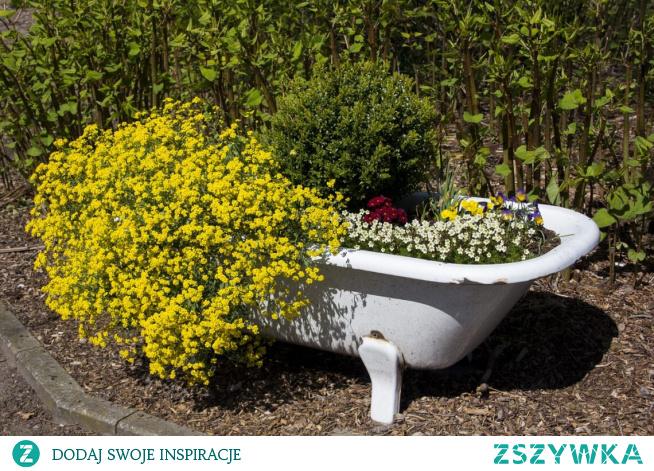 Na co pomagają zioła do kąpieli...