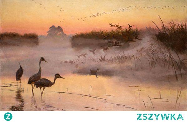 Reprodukcja obrazu Józef Chełmoński Świt Królestwo ptaków to jeden z obrazów polskiego mistrza realizmu. Przepełniony spokojem i wieczorną nostalgią pejzaż, w którym autor dotyka jednego ze swoich ulubionych tematów. Zapraszamy!